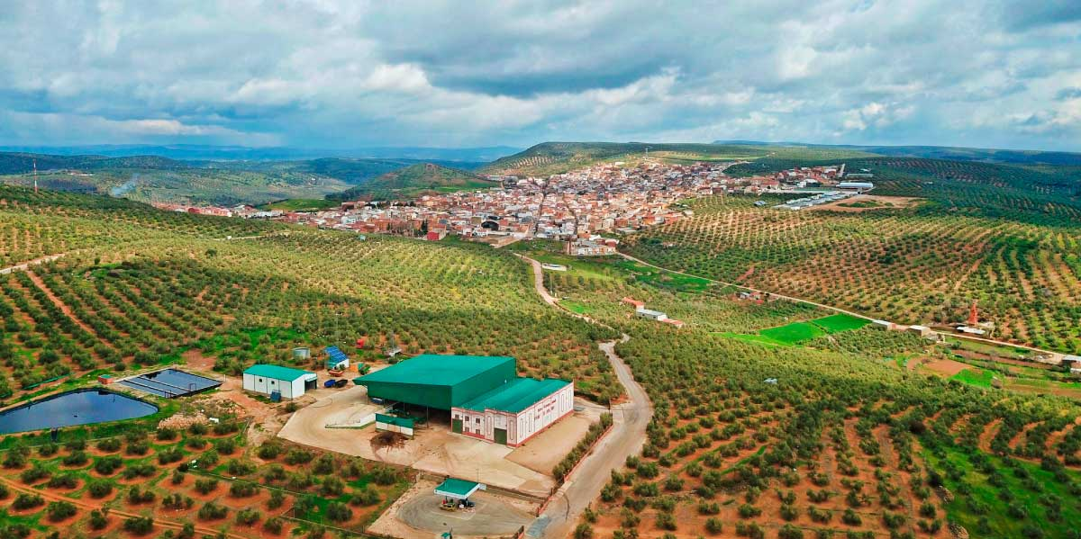 Sociedad Cooperativa Andaluza 'Fuente del Rosal' | Aceites FuenteÓleo